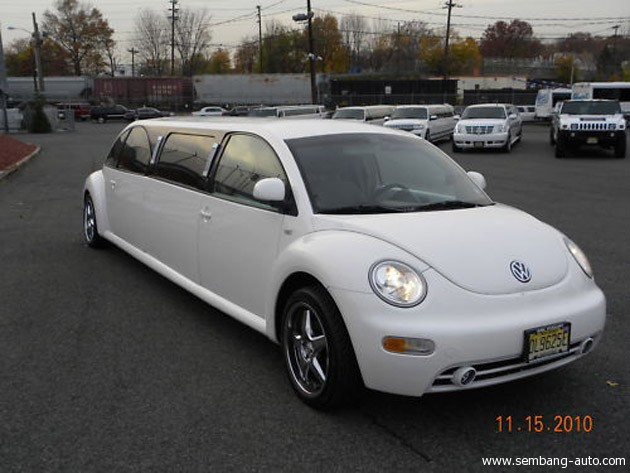 01-beetle-1293199821